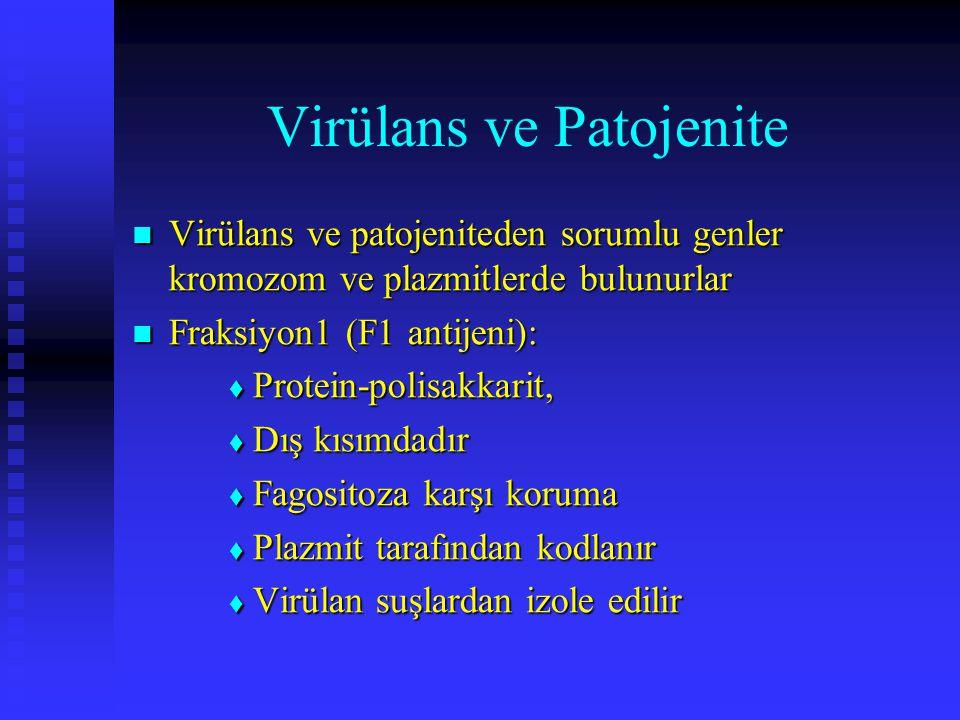 Virülans ve Patojenite Virülans ve patojeniteden sorumlu genler kromozom ve plazmitlerde bulunurlar Virülans ve patojeniteden sorumlu genler kromozom