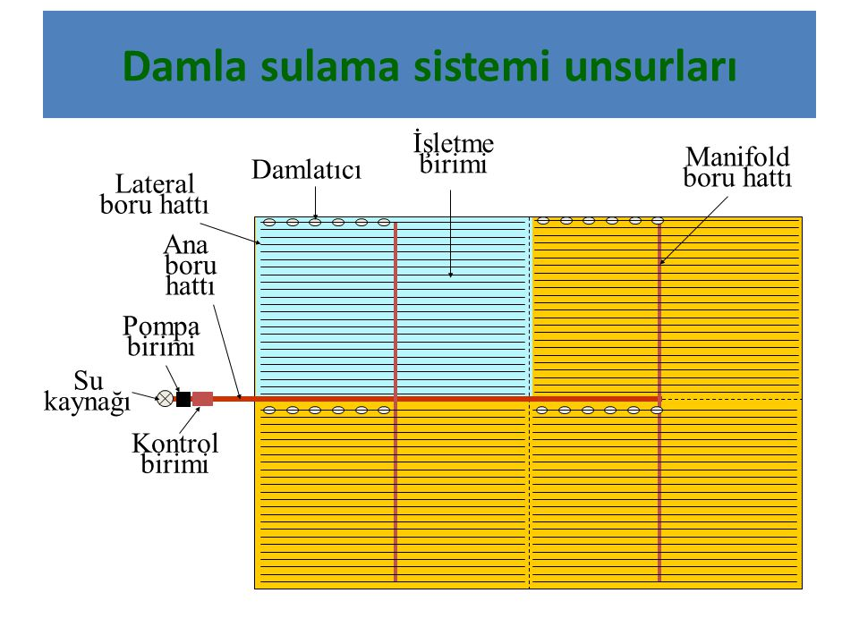Damla sulama sistemi unsurları Su kaynağı Pompa birimi Kontrol birimi Ana boru hattı Manifold boru hattı Lateral boru hattı Damlatıcı İşletme birimi
