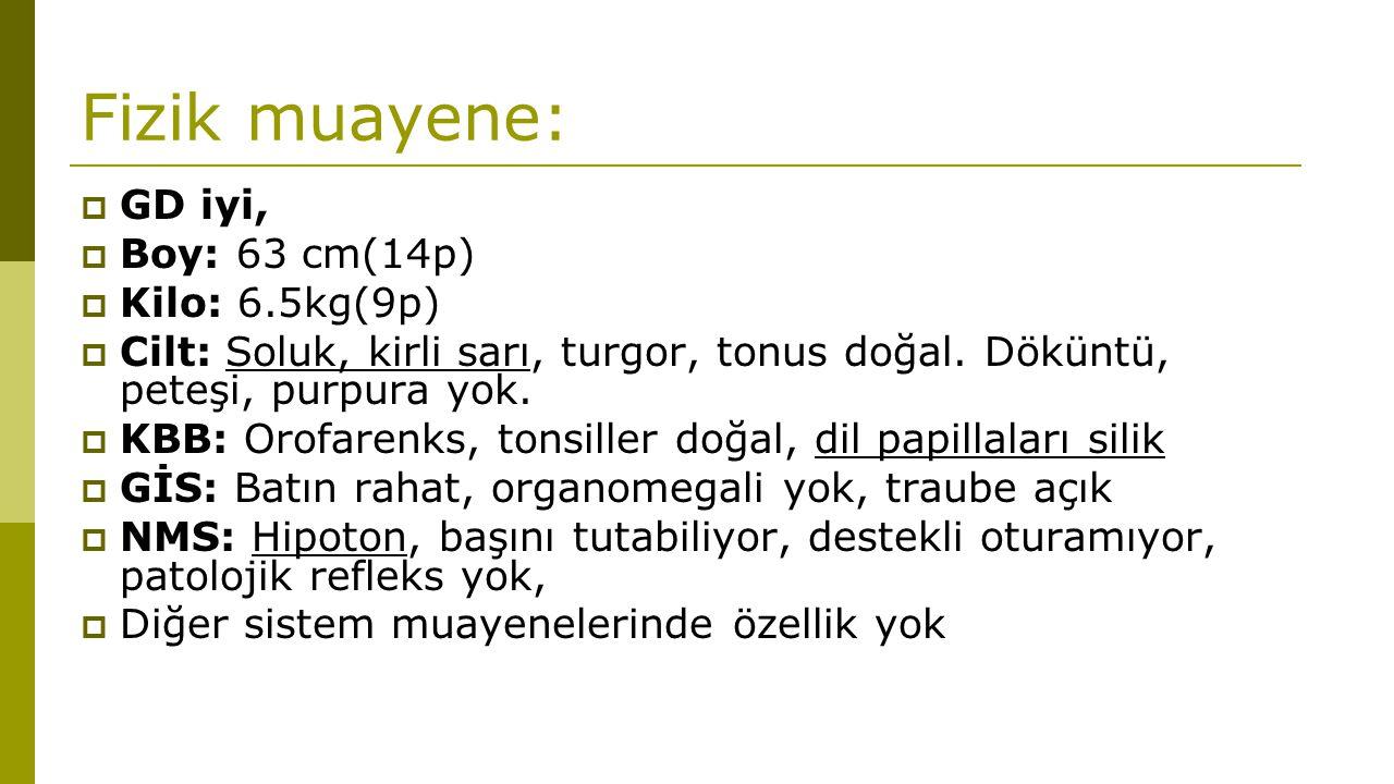 Fizik muayene:  GD iyi,  Boy: 63 cm(14p)  Kilo: 6.5kg(9p)  Cilt: Soluk, kirli sarı, turgor, tonus doğal. Döküntü, peteşi, purpura yok.  KBB: Orof