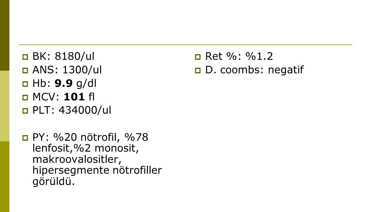  Kre: 0.46 mg/dl  AST: 25 U/l  ALT: 35 U/l  T.bil:2.2 mg/dl  D.bil:0.4 mg/dl  LDH: 272 U/l  Ferritin: 82.7 ng/ml  Folik asit: 24.39 ng/ml  B12 vit: <50 pg/ml