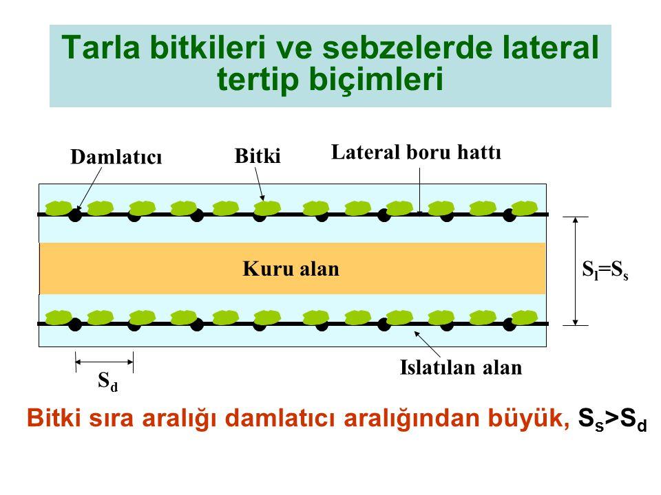 Tarla bitkileri ve sebzelerde lateral tertip biçimleri Bitki sıra aralığı damlatıcı aralığından büyük, S s >S d Kuru alan Damlatıcı Bitki Lateral boru