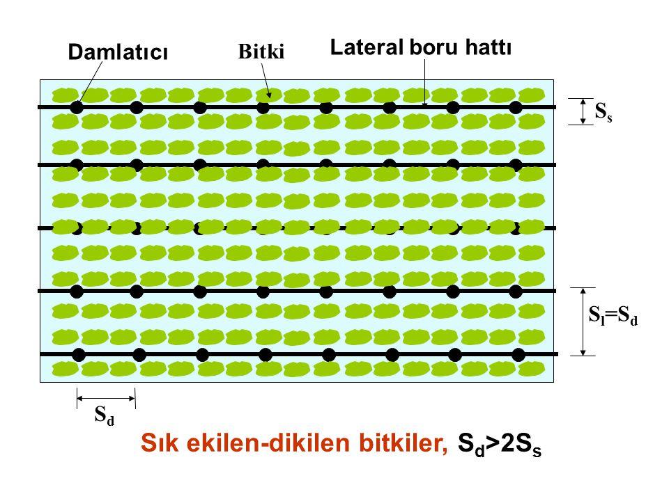 Meyve ağaçlarında lateral tertip biçimleri Her ağaç sırasına tek lateral Kuru alan DamlatıcıAğaçLateral boru hattı SdSd S l =S s Islatılan alan