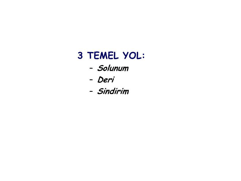 3 TEMEL YOL: –Solunum –Deri –Sindirim