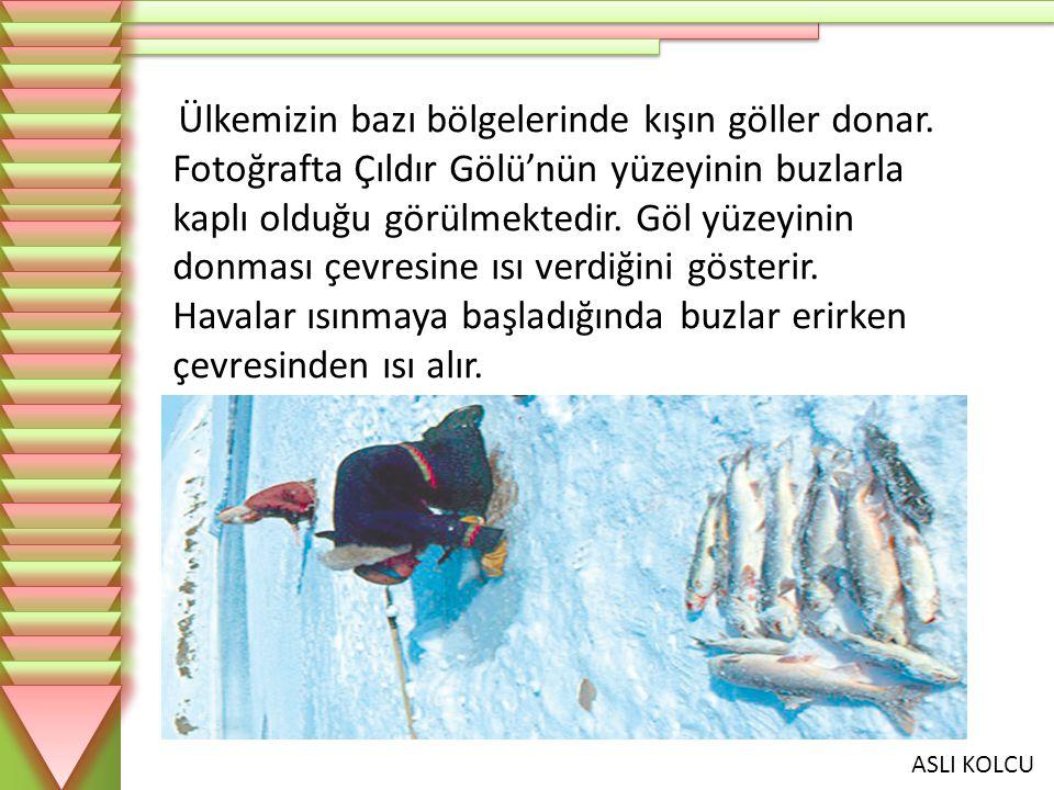 ASLI KOLCU Ülkemizin bazı bölgelerinde kışın göller donar. Fotoğrafta Çıldır Gölü'nün yüzeyinin buzlarla kaplı olduğu görülmektedir. Göl yüzeyinin don