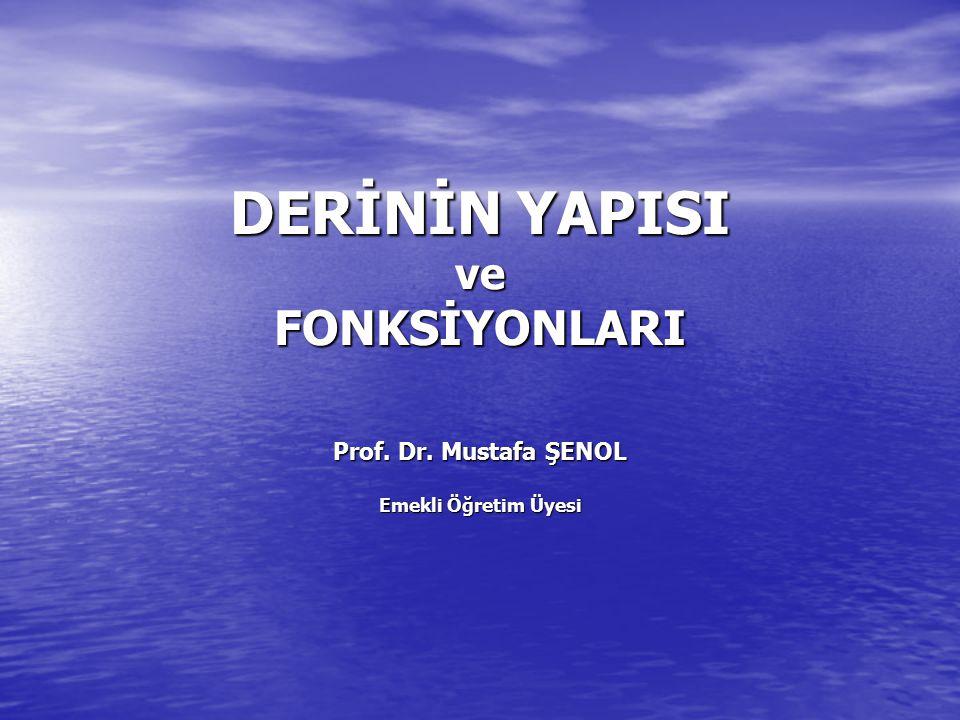 DERİNİN YAPISI ve FONKSİYONLARI Prof. Dr. Mustafa ŞENOL Emekli Öğretim Üyesi