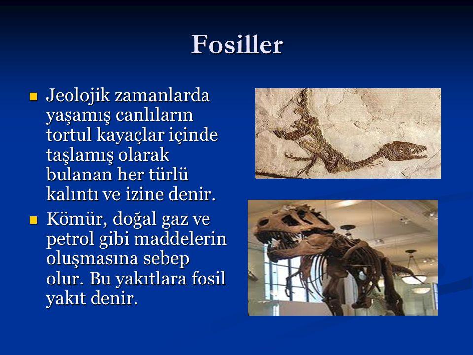 Fosiller Jeolojik zamanlarda yaşamış canlıların tortul kayaçlar içinde taşlamış olarak bulanan her türlü kalıntı ve izine denir. Jeolojik zamanlarda y