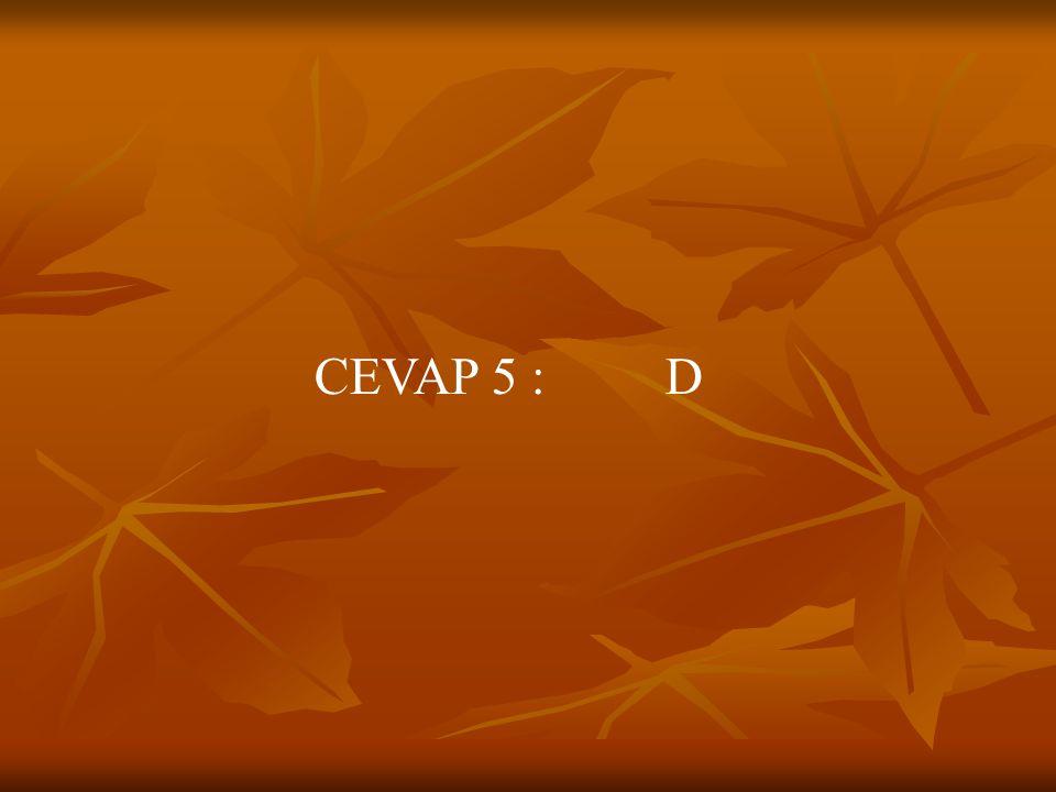 CEVAP 5 : D