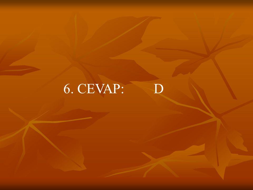 6. CEVAP: D