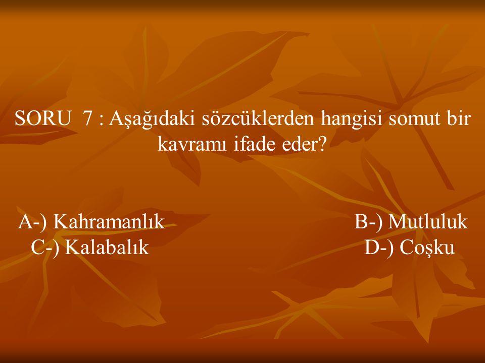 SORU 7 : Aşağıdaki sözcüklerden hangisi somut bir kavramı ifade eder? A-) Kahramanlık B-) Mutluluk C-) Kalabalık D-) Coşku