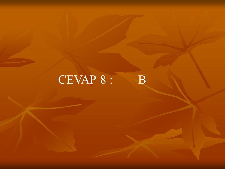 CEVAP 8 : B