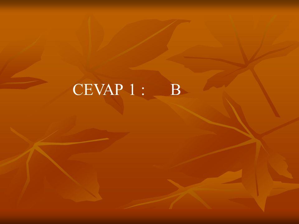 CEVAP 1 : B