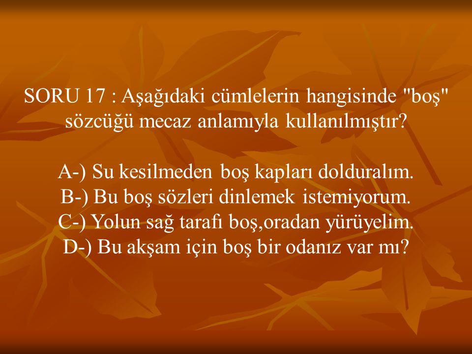 SORU 17 : Aşağıdaki cümlelerin hangisinde