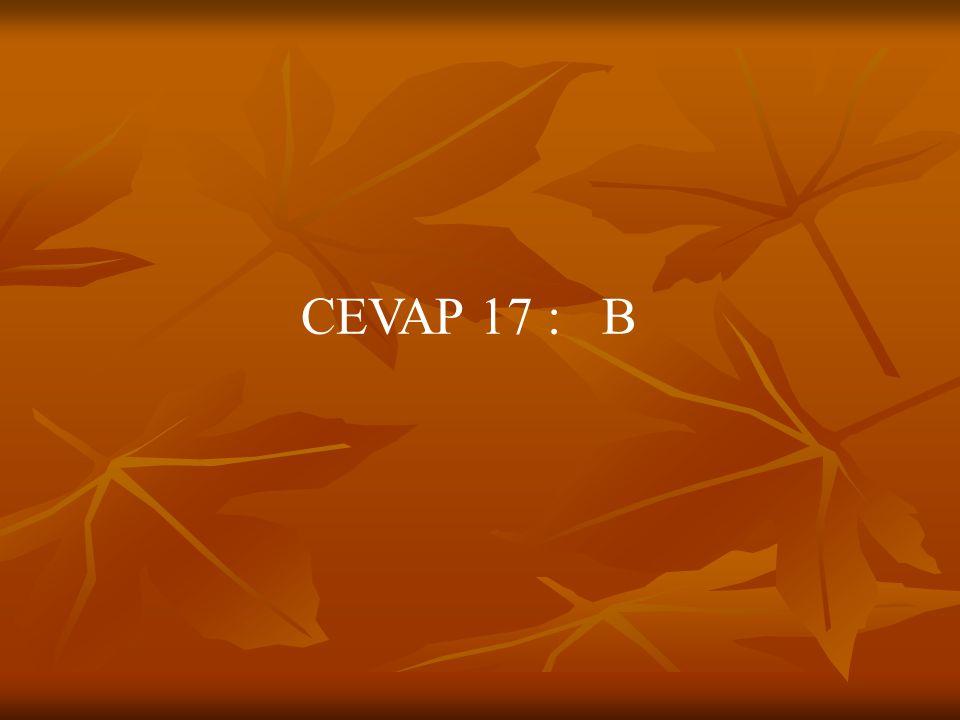 CEVAP 17 : B