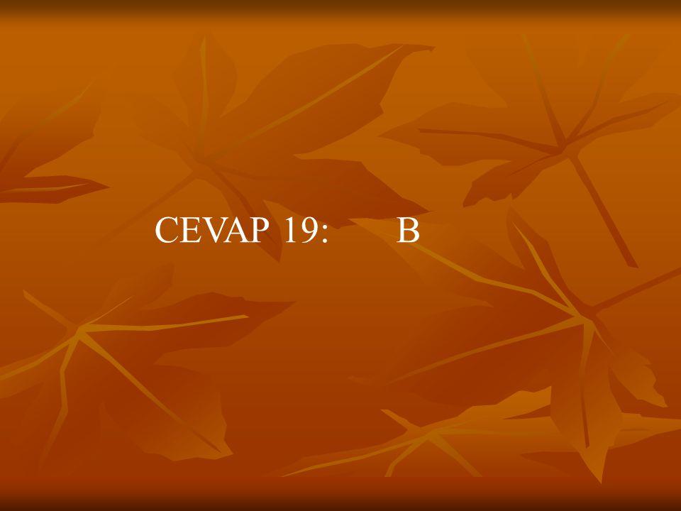 CEVAP 19: B