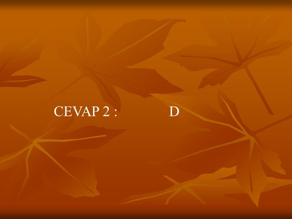SORU 3 : Aşağıdaki cümlelerin hangisinde altı çizili sözcük soyut anlamlıdır.