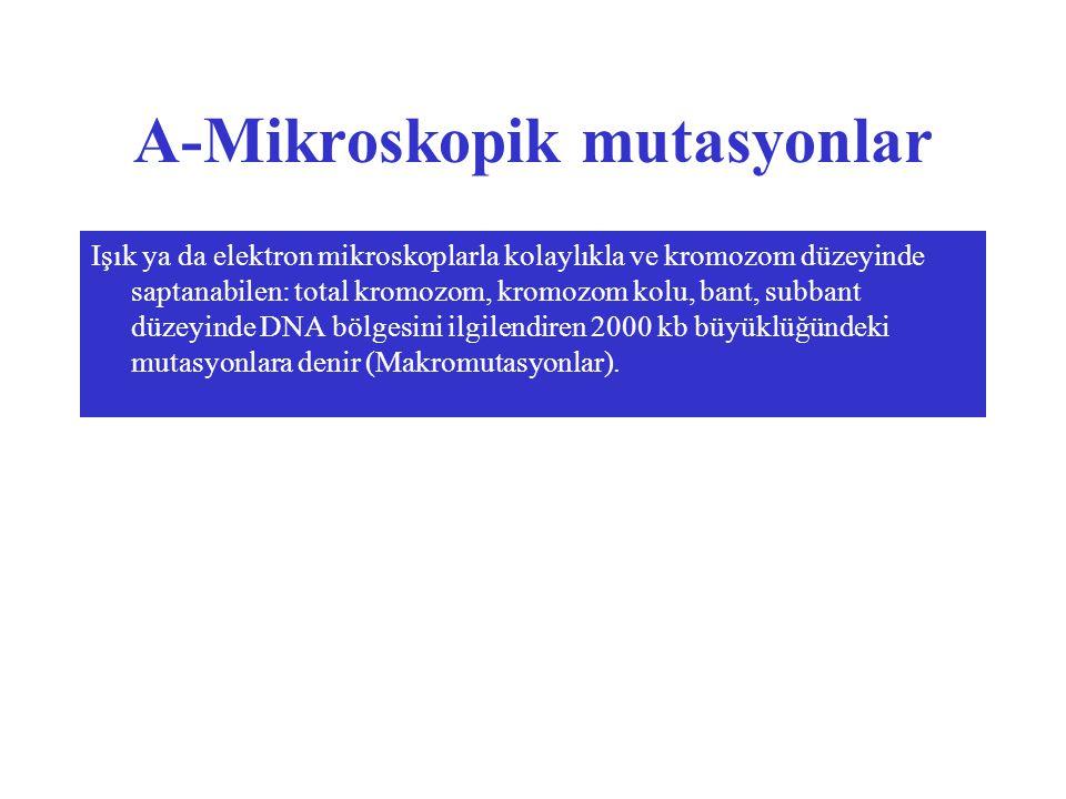 A-Mikroskopik mutasyonlar Işık ya da elektron mikroskoplarla kolaylıkla ve kromozom düzeyinde saptanabilen: total kromozom, kromozom kolu, bant, subbant düzeyinde DNA bölgesini ilgilendiren 2000 kb büyüklüğündeki mutasyonlara denir (Makromutasyonlar).