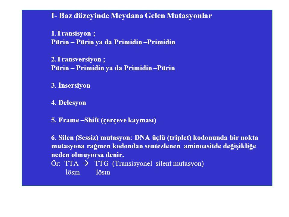 I- Baz düzeyinde Meydana Gelen Mutasyonlar 1.Transisyon ; Pürin – Pürin ya da Primidin –Primidin 2.Transversiyon ; Pürin – Primidin ya da Primidin –Pürin 3.