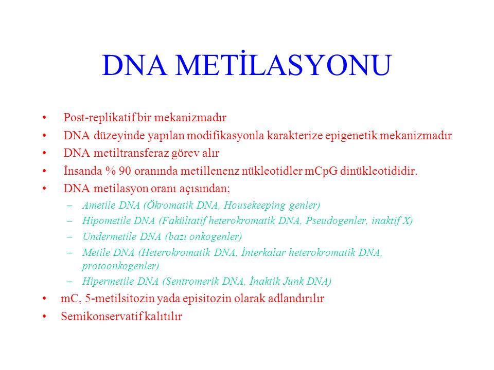 DNA METİLASYONU Post-replikatif bir mekanizmadır DNA düzeyinde yapılan modifikasyonla karakterize epigenetik mekanizmadır DNA metiltransferaz görev alır İnsanda % 90 oranında metillenenz nükleotidler mCpG dinükleotididir.