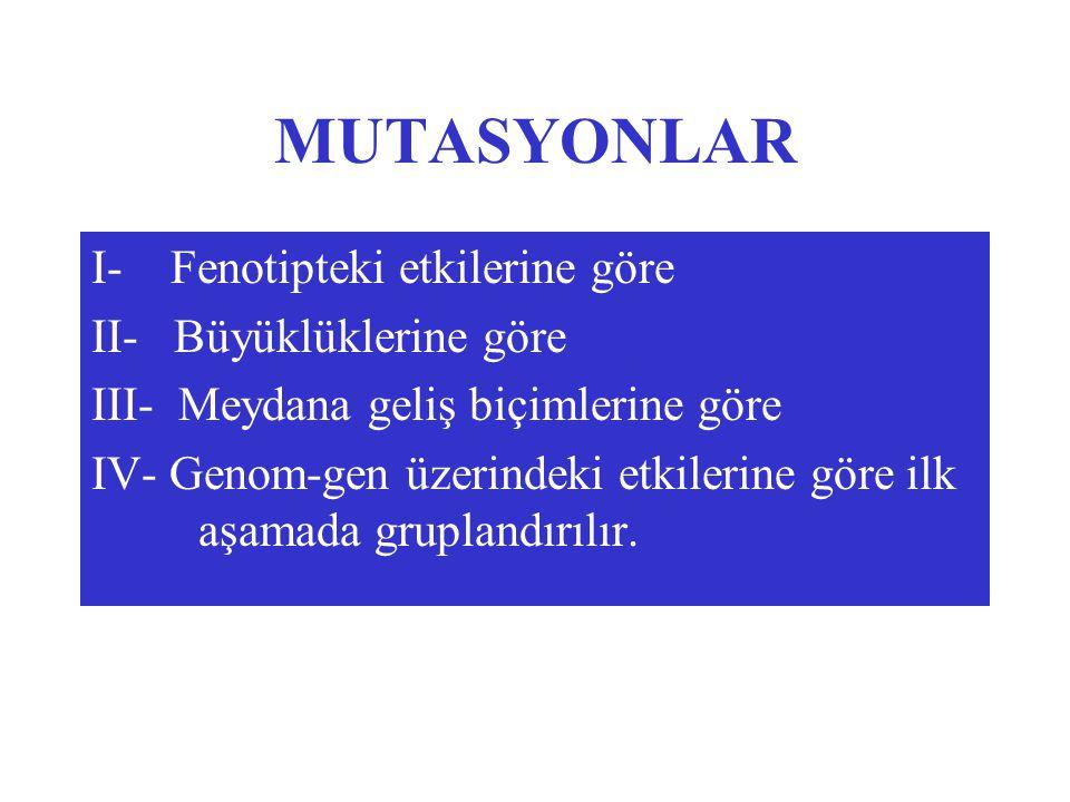 MUTASYONLAR I- Fenotipteki etkilerine göre II- Büyüklüklerine göre III- Meydana geliş biçimlerine göre IV- Genom-gen üzerindeki etkilerine göre ilk aşamada gruplandırılır.
