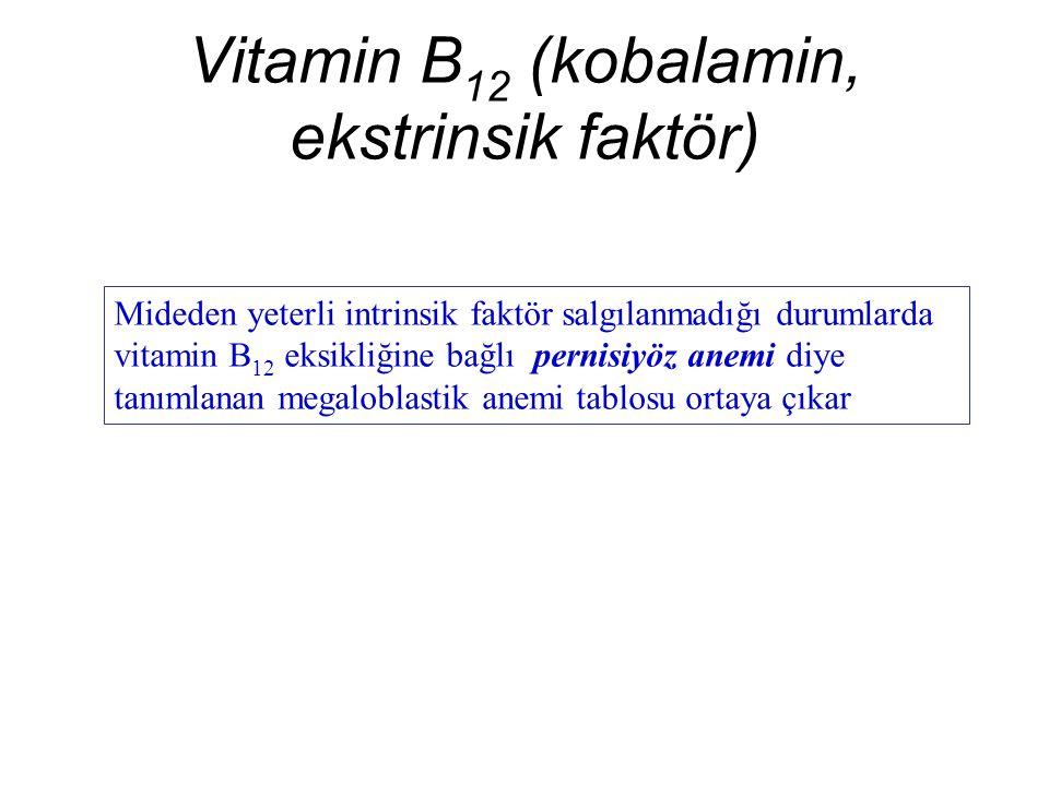 Vitamin B 12 (kobalamin, ekstrinsik faktör) Mideden yeterli intrinsik faktör salgılanmadığı durumlarda vitamin B 12 eksikliğine bağlı pernisiyöz anemi diye tanımlanan megaloblastik anemi tablosu ortaya çıkar