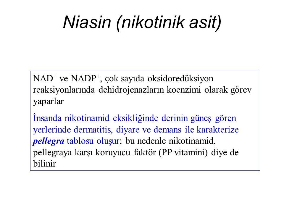 Niasin (nikotinik asit) NAD + ve NADP +, çok sayıda oksidoredüksiyon reaksiyonlarında dehidrojenazların koenzimi olarak görev yaparlar İnsanda nikotinamid eksikliğinde derinin güneş gören yerlerinde dermatitis, diyare ve demans ile karakterize pellegra tablosu oluşur; bu nedenle nikotinamid, pellegraya karşı koruyucu faktör (PP vitamini) diye de bilinir