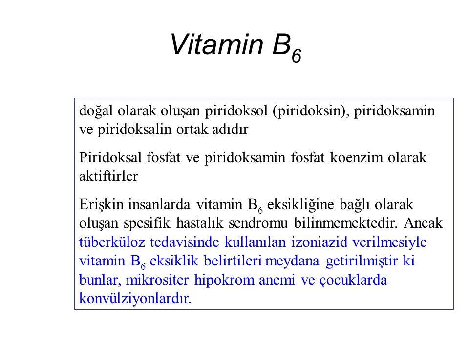 Vitamin B 6 doğal olarak oluşan piridoksol (piridoksin), piridoksamin ve piridoksalin ortak adıdır Piridoksal fosfat ve piridoksamin fosfat koenzim olarak aktiftirler Erişkin insanlarda vitamin B 6 eksikliğine bağlı olarak oluşan spesifik hastalık sendromu bilinmemektedir.