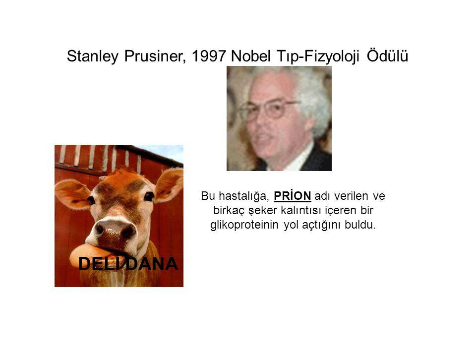 DELİ DANA Stanley Prusiner, 1997 Nobel Tıp-Fizyoloji Ödülü Bu hastalığa, PRİON adı verilen ve birkaç şeker kalıntısı içeren bir glikoproteinin yol açtığını buldu.