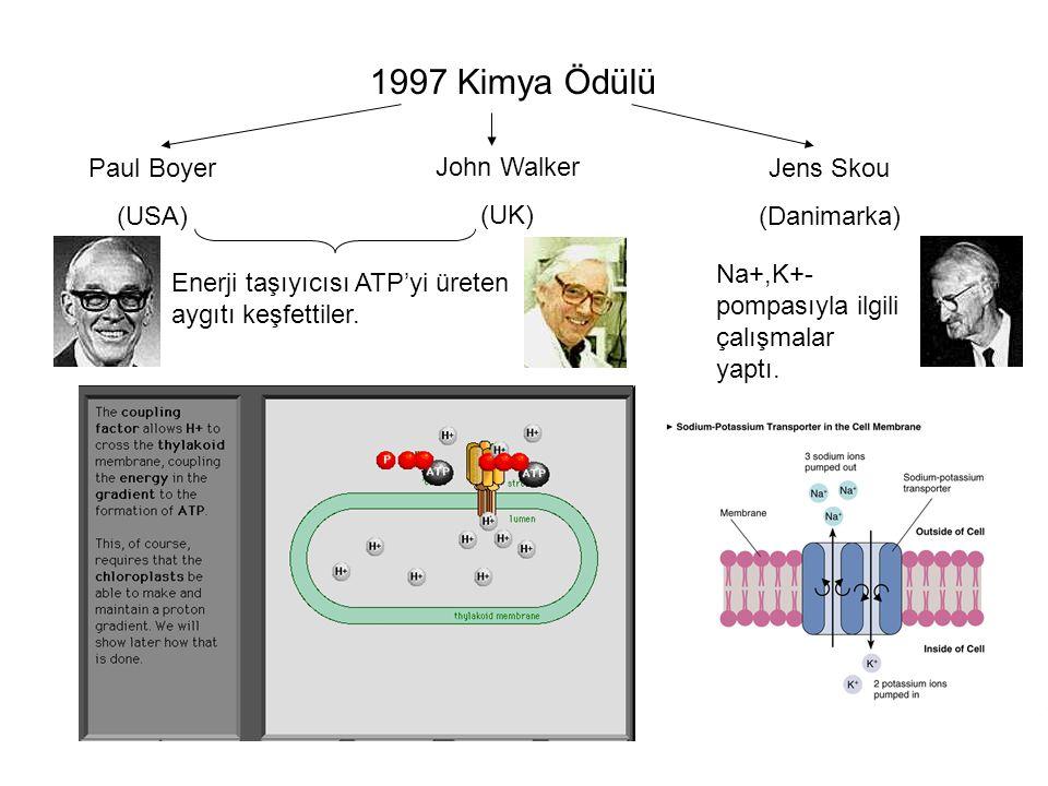 1997 Kimya Ödülü Paul Boyer (USA) John Walker (UK) Jens Skou (Danimarka) Enerji taşıyıcısı ATP'yi üreten aygıtı keşfettiler.