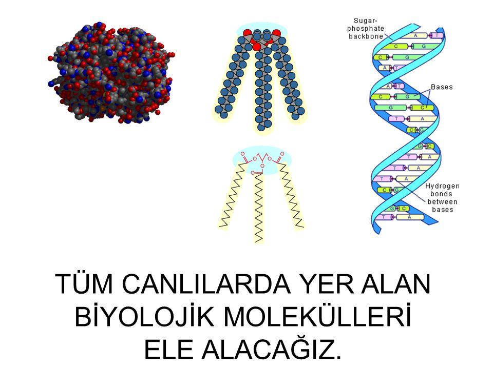 Tüm canlılar basit kimya ve fizik kurallarına uyan kimyasal bileşiklerden meydana gelirler.