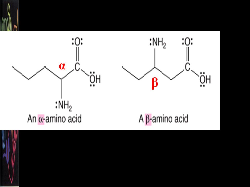 The amino group can be located on the hydrocarbon chain with a Greek letter, , , , or .