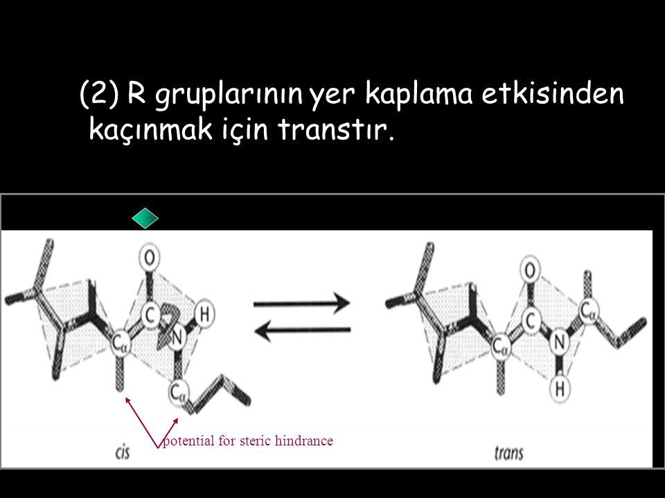 (2) R gruplarının yer kaplama etkisinden kaçınmak için transtır. potential for steric hindrance