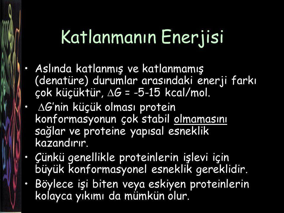 Katlanmanın Enerjisi Aslında katlanmış ve katlanmamış (denatüre) durumlar arasındaki enerji farkı çok küçüktür,  G = -5-15 kcal/mol.