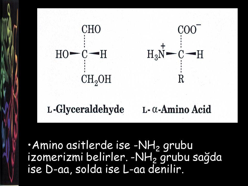 Amino asitlerde ise -NH 2 grubu izomerizmi belirler.
