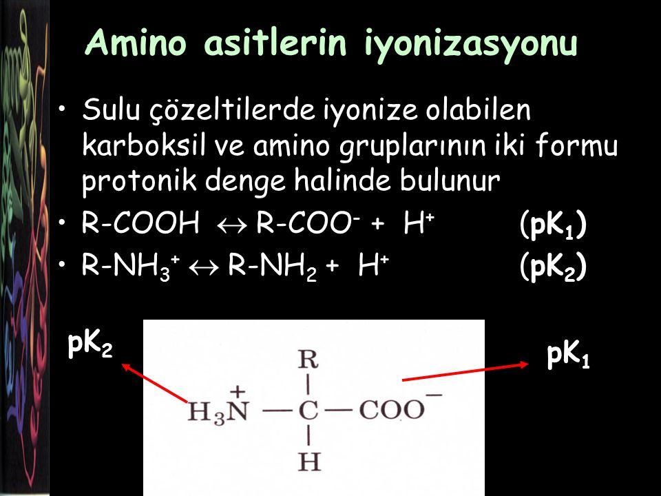 Amino asitlerin iyonizasyonu Sulu çözeltilerde iyonize olabilen karboksil ve amino gruplarının iki formu protonik denge halinde bulunur R-COOH  R-COO - + H + (pK 1 ) R-NH 3 +  R-NH 2 + H + (pK 2 ) pK 1 pK 2