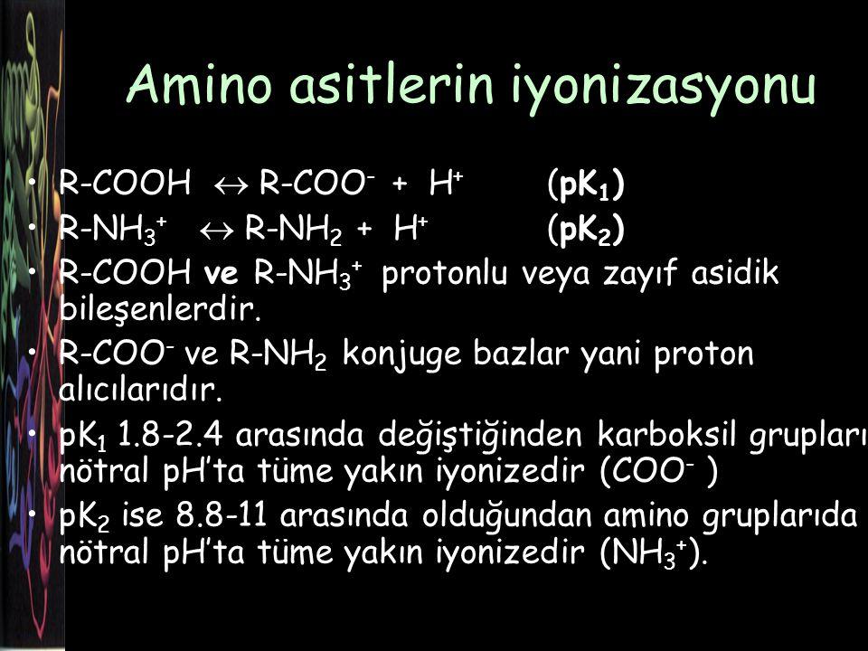 Amino asitlerin iyonizasyonu R-COOH  R-COO - + H + (pK 1 ) R-NH 3 +  R-NH 2 + H + (pK 2 ) R-COOH ve R-NH 3 + protonlu veya zayıf asidik bileşenlerdir.