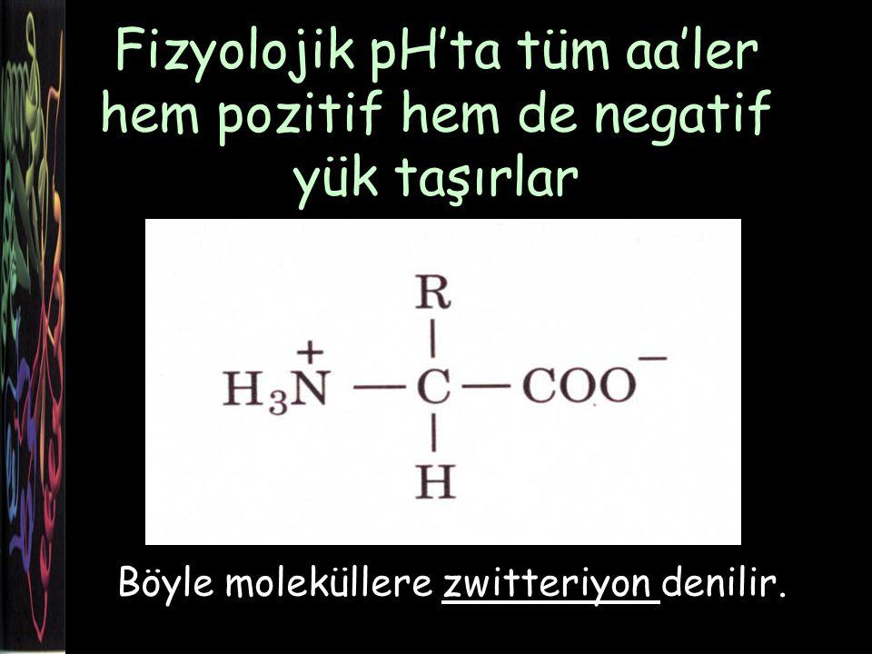 Fizyolojik pH'ta tüm aa'ler hem pozitif hem de negatif yük taşırlar Böyle moleküllere zwitteriyon denilir.