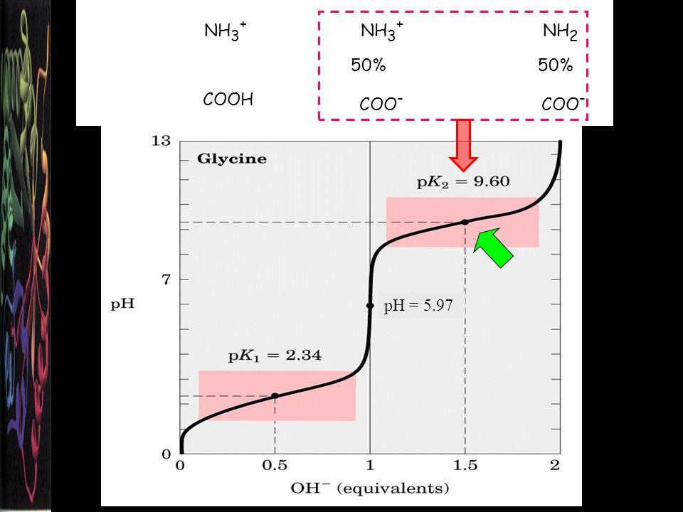 NH 3 + COOH NH 3 + COO - NH 2 COO - 50% pH = 5.97