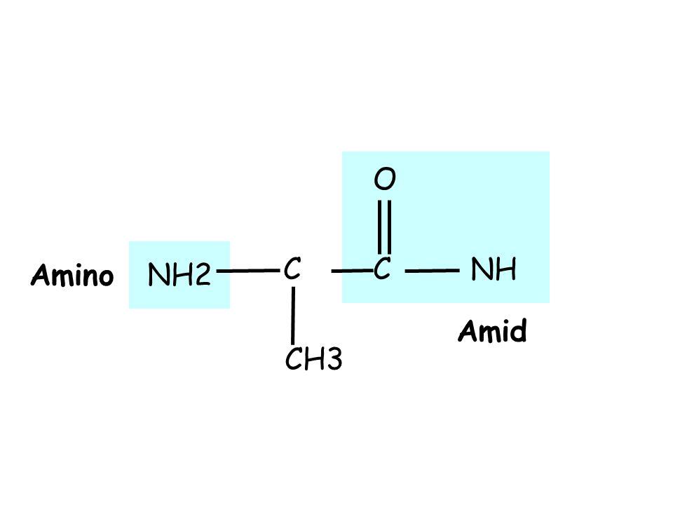 NH CH3 NH2 CC O Amid Amino