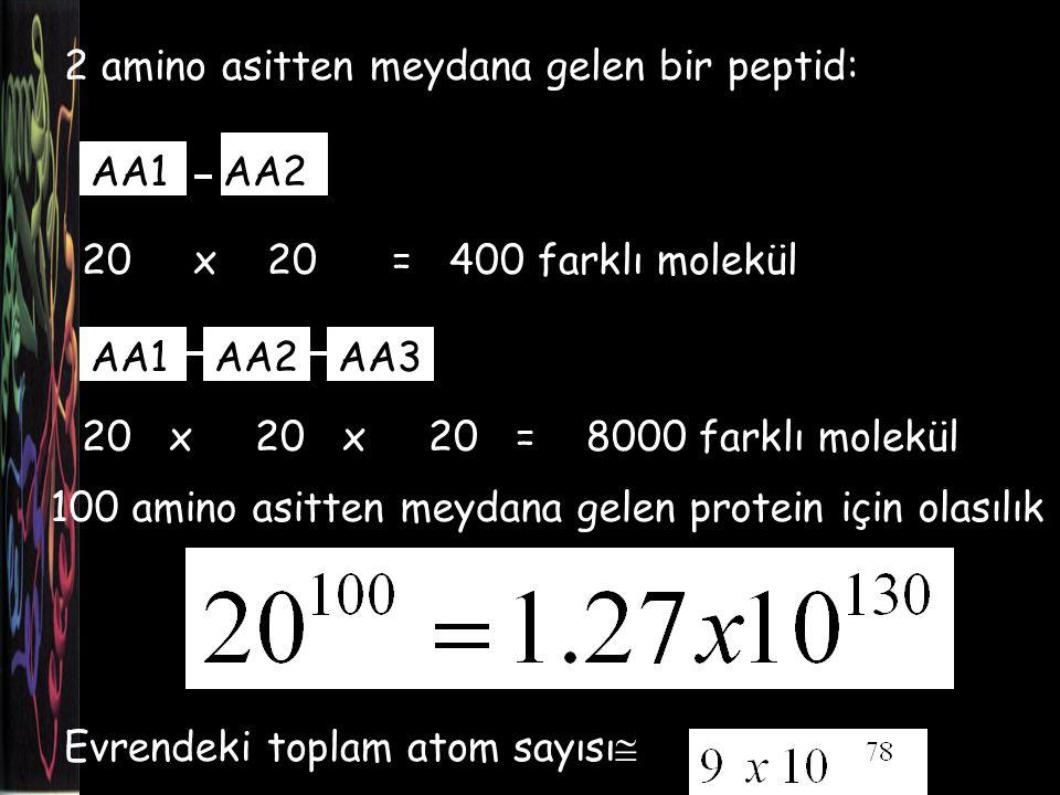 Proteinin bağ oluşumu ile katlanması… protein molekülünün düzensizliği azalır (- entropi, istenmez).
