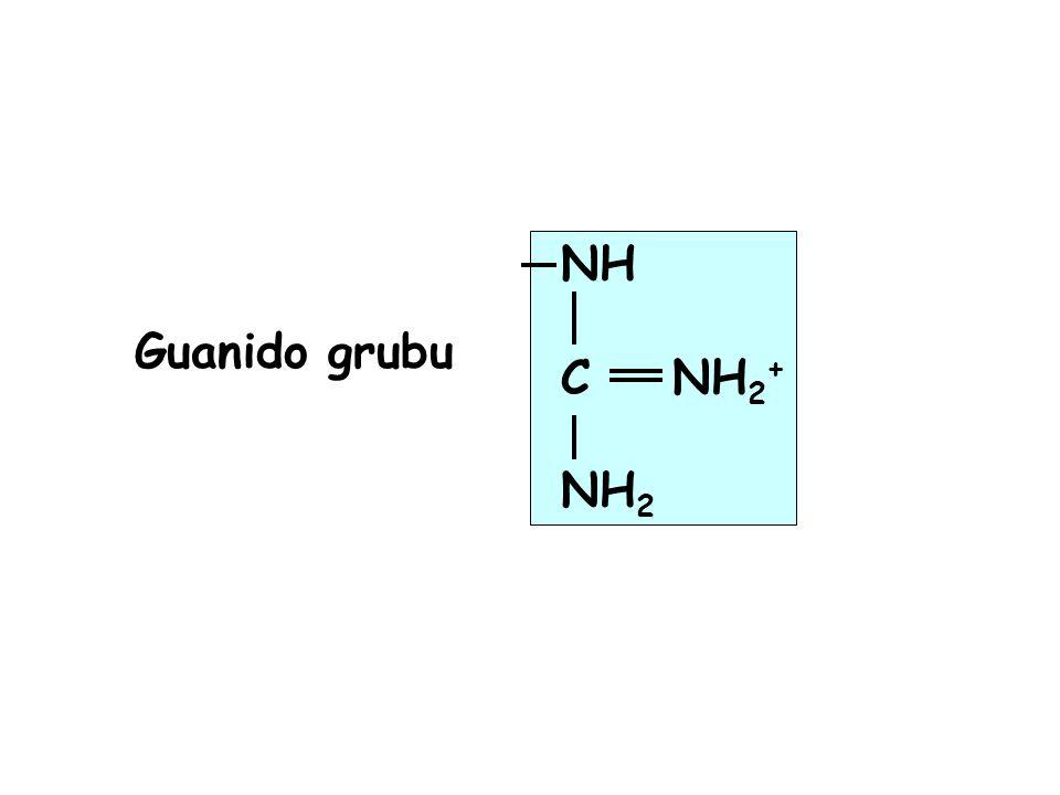 NH C NH 2 + NH 2 Guanido grubu