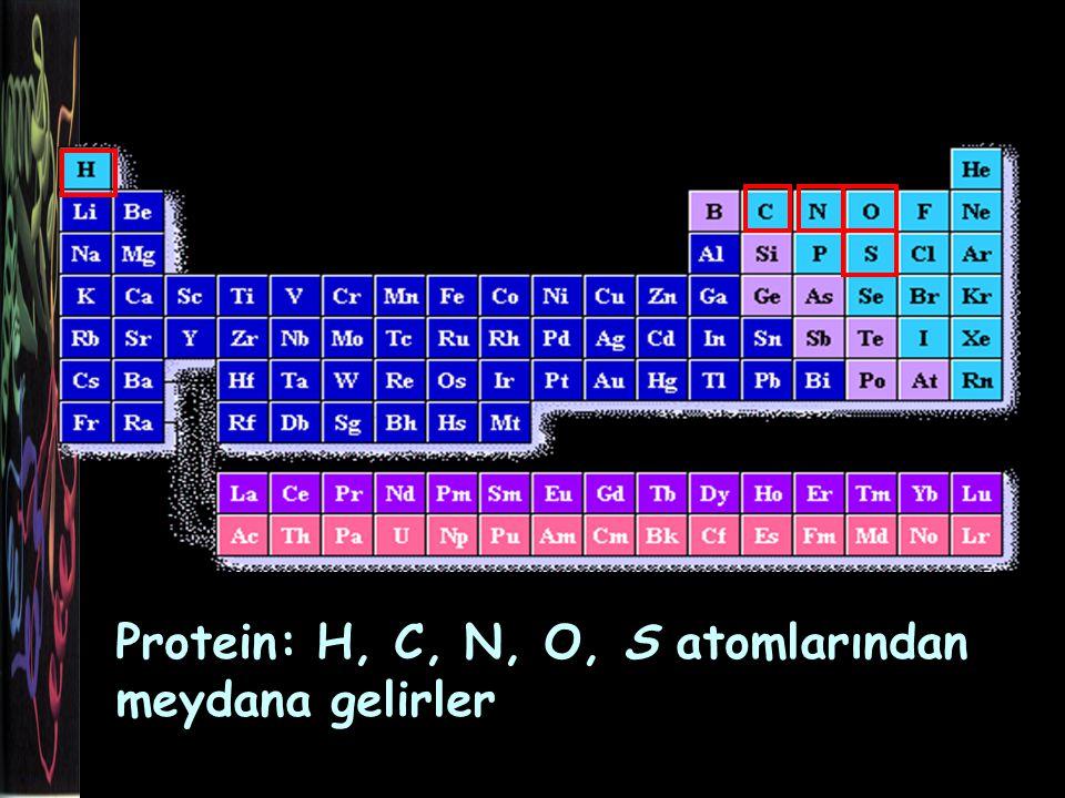Amino asitlerin ortak yapısal özellikleri Aynı C atomuna bağlı H atomu Karboksil (-COOH) grubu Amino (-NH2) grubu R grubu : değişken grup, yapısı, elektrik yükü ve büyüklüğü farklılık gösterir