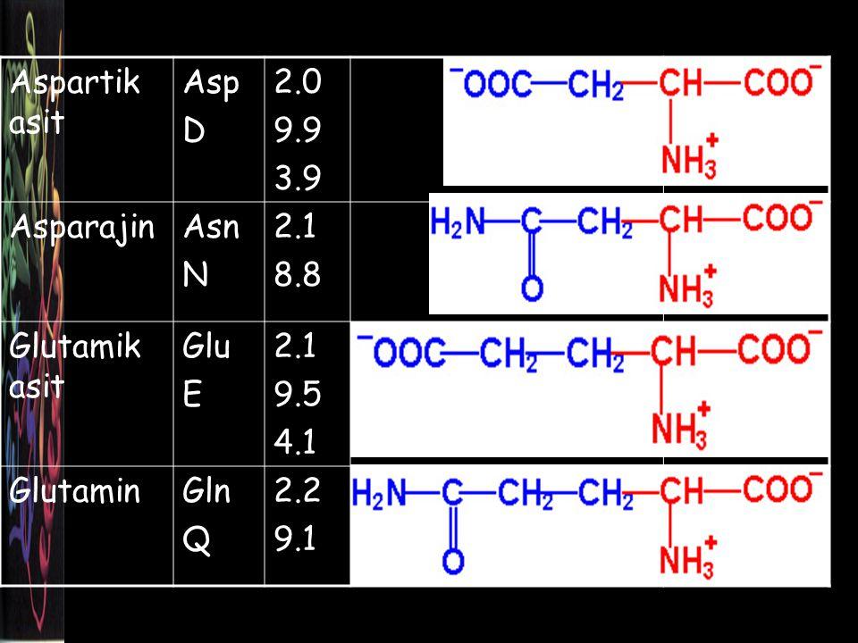 Aspartik asit Asp D 2.0 9.9 3.9 AsparajinAsn N 2.1 8.8 Glutamik asit Glu E 2.1 9.5 4.1 GlutaminGln Q 2.2 9.1