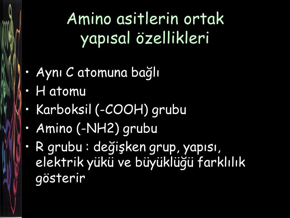 NH 2 -C-COOH R H Amino asitlerin ortak yapısal özellikleri NH 2 -C-COOH R H Ortak yapı amino asit
