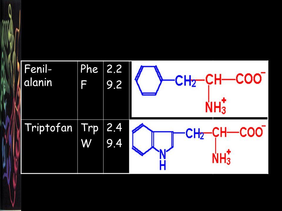 Fenil- alanin Phe F 2.2 9.2 TriptofanTrp W 2.4 9.4