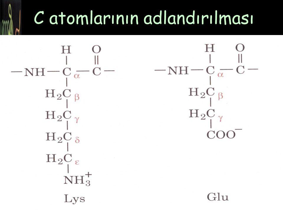 + NH 3 -CH-COO - CH 2 COO -    C atomlarının adlandırılması 