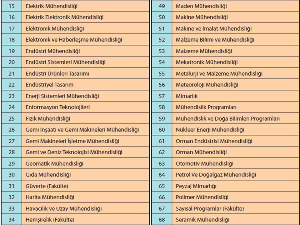 MF 4 Puan Türü İle Öğrenci Alan Lisans Programları (Mühendislik-Teknik Programlar)