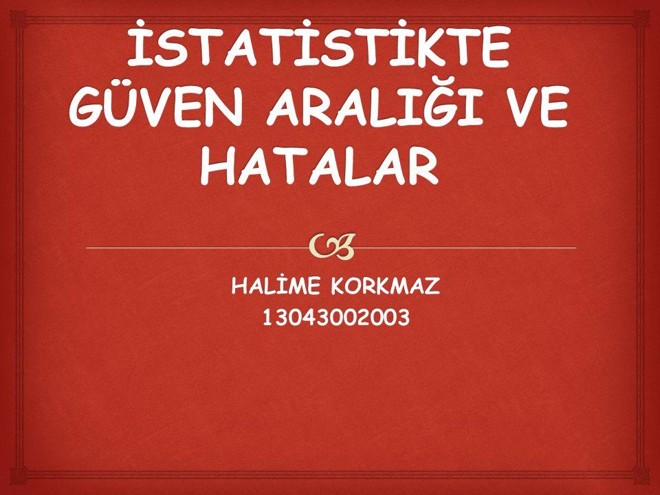 HALİME KORKMAZ 13043002003
