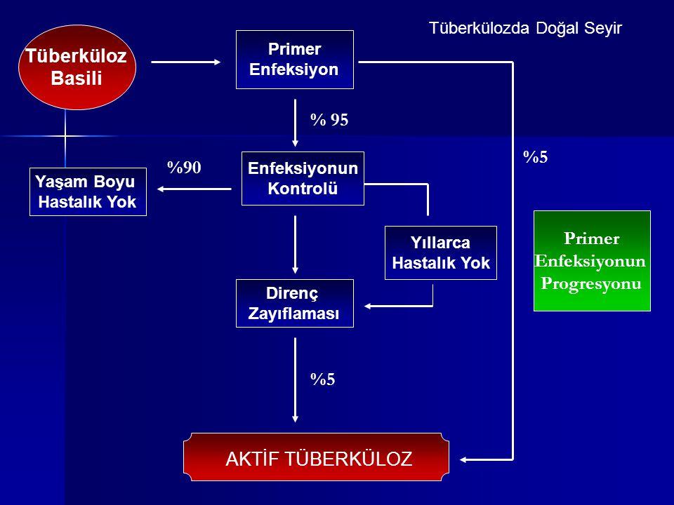 Tüberküloz Basili Primer Enfeksiyon Direnç Zayıflaması Enfeksiyonun Kontrolü Yaşam Boyu Hastalık Yok Yıllarca Hastalık Yok Tüberkülozda Doğal Seyir AK