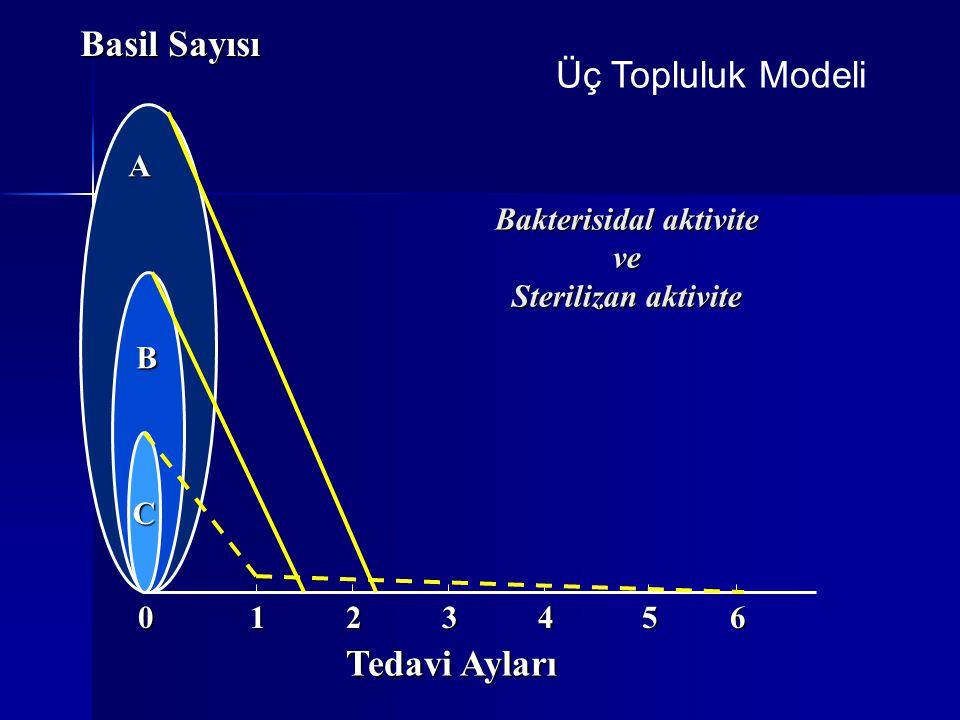 C A B Basil Sayısı 102345 Tedavi Ayları 6 Bakterisidal aktivite ve Sterilizan aktivite Üç Topluluk Modeli
