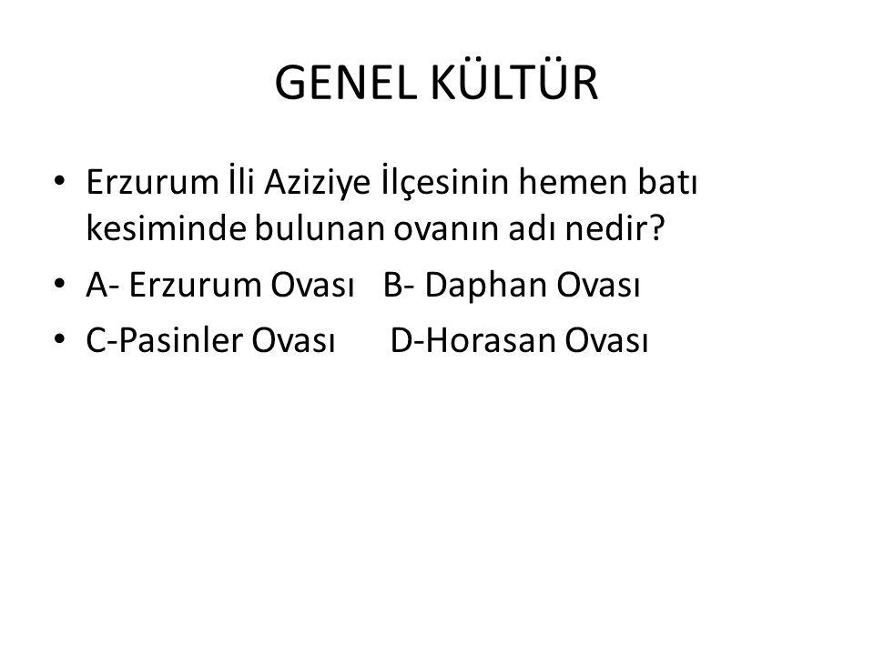 GENEL KÜLTÜR Erzurum İli Aziziye İlçesinin hemen batı kesiminde bulunan ovanın adı nedir.